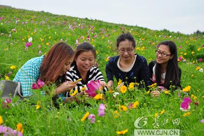 """它填补了湖北省""""草原""""旅游项目的空白和武汉木兰生态"""