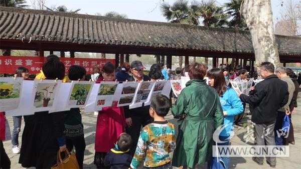 华农学子宣传园艺接地气吸引游园市民