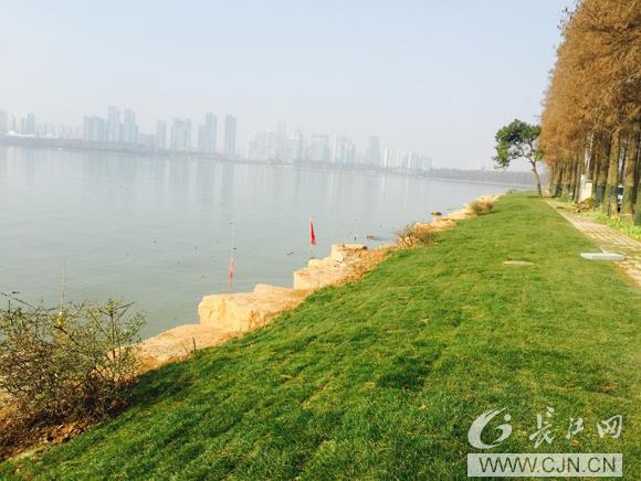 """东湖绿道:藏在高颜值下的""""大海绵""""……_武汉24小时"""