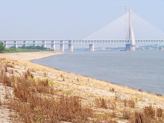 以优美的词句,向记者展现了长江干流第三大岛—天兴洲得天独厚的资源