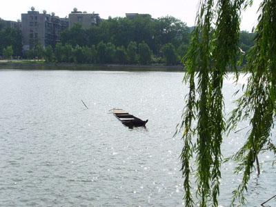 今年以来,武昌区分别对武昌紫阳公园,洪山公园,武昌公园实施全面改造