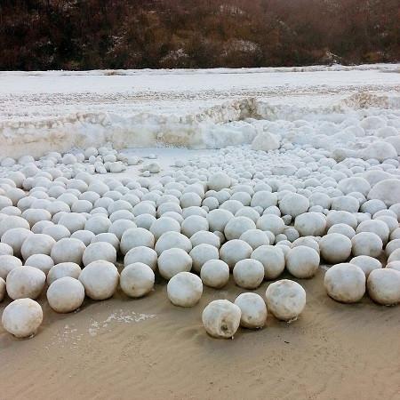 俄罗斯海岸现大量雪球 如白色地毯