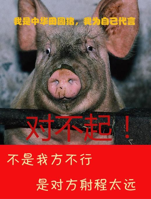 卡梅伦日猪是真的吗_《卡梅伦访华成果:英国获准向中国出口猪精液》