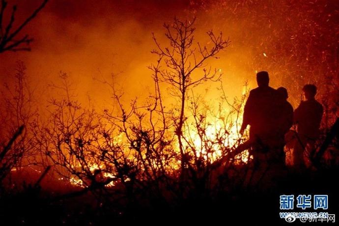 内蒙古大兴安岭森林火灾扑火兵力增至8365人