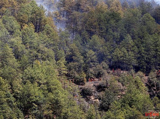 四川冕宁森林火灾:抽水上山灭火,目前过火面积19公顷