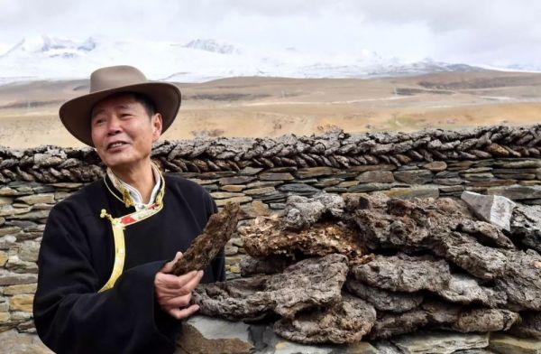 他做了个梦,57岁辞京官赴西藏干了件大事,获单霁翔点赞……