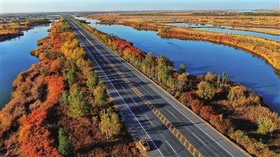 网上赚钱小虾:【生态文明@湿地】银川黄河湿地,焕发生机之魅