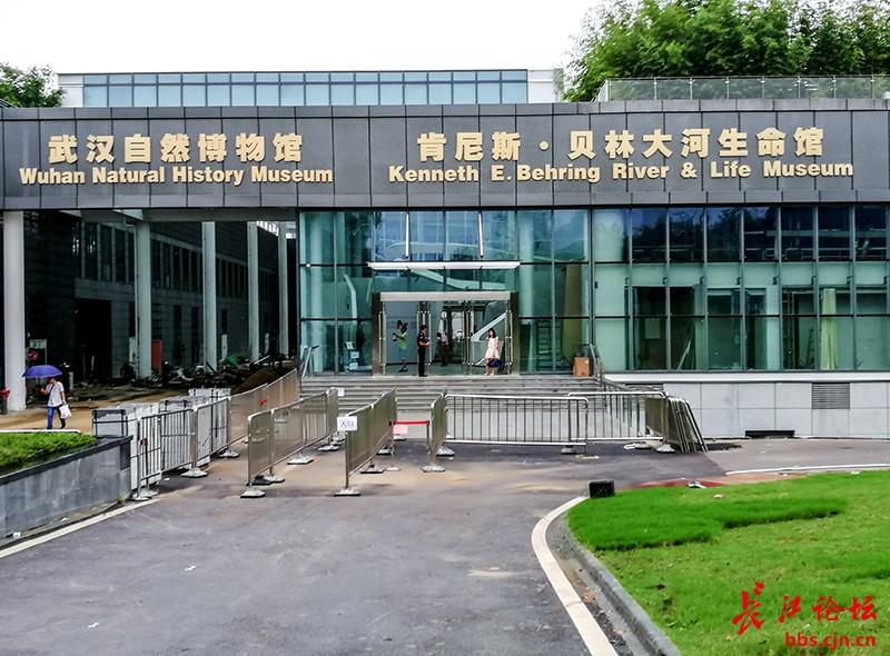 武汉自然博物馆·贝林大河生命馆即将正式开馆