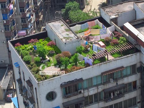 钢城有座空中花园图片
