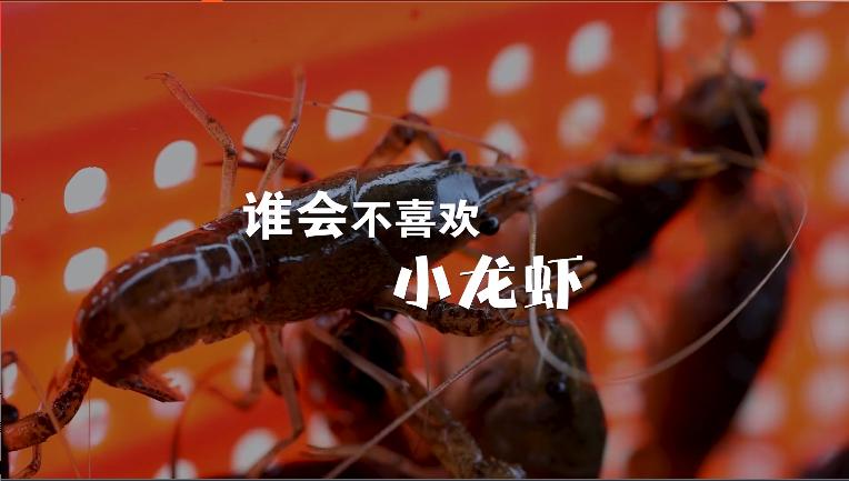 小龙虾比夏天先到