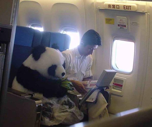 坐飞机不能带什么