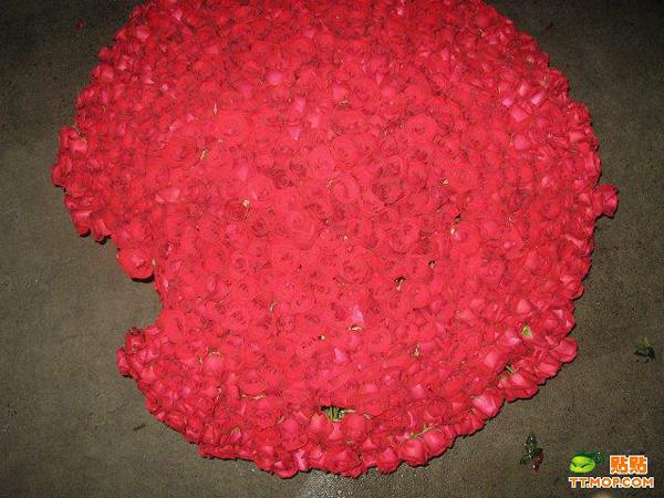 999朵玫瑰花及制作过程