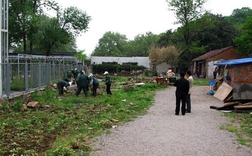 东北农村院子菜园设计