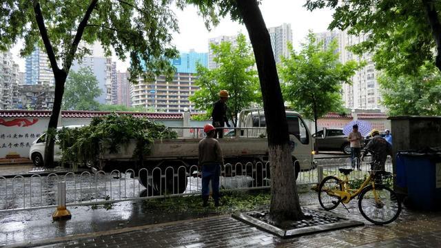 一棵大树的树枝被突如其来的大雨折断,掉落在马路上,侵占了半边道路