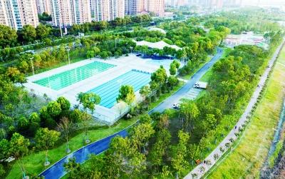 武汉海绵城市建设,绿化带比人车道加起来还宽