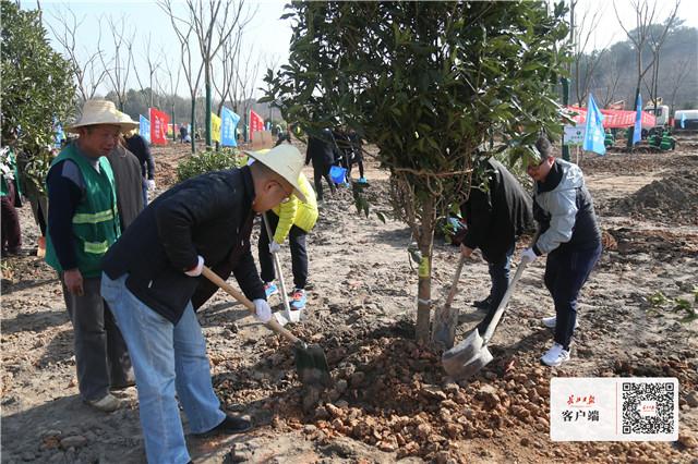 绿化覆盖率近四成,光谷还将续建新建9座公园