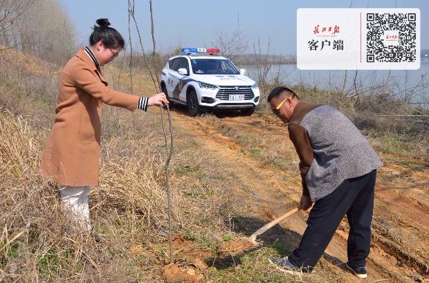 """武汉首例""""还树案""""罚种130棵树全活,受罚者多种50棵树以示悔意"""