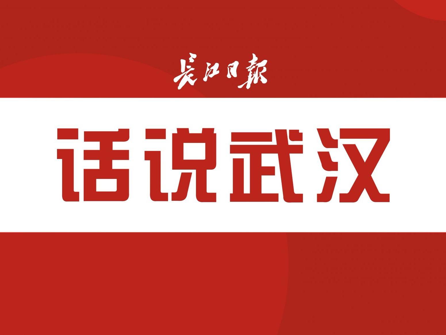 武汉法盟官网