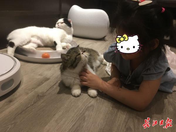 92撸电影网_宠物经济节日大爆发!\