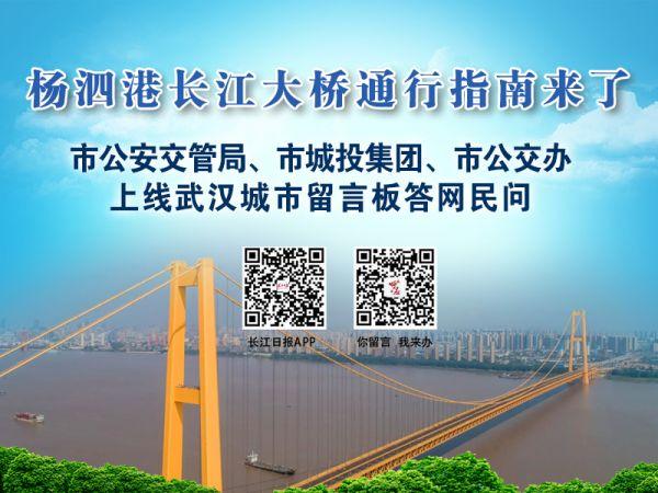 杨泗港大桥具体怎么走?完整版出行攻略在此