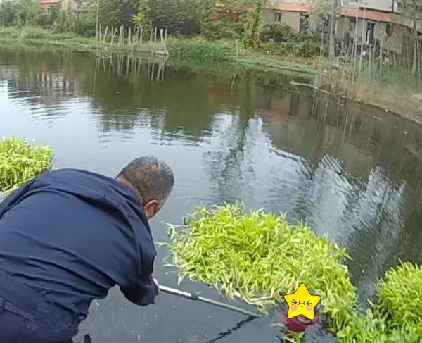 七旬老人落水被水草缠住,危机时刻警民合力救人