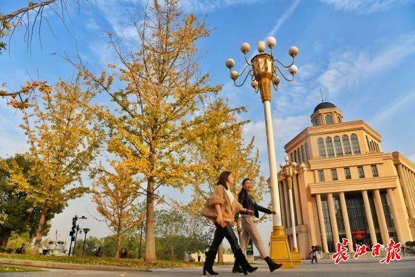 强冷空气明晚到,武汉后天7级大风大降温