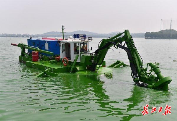"""能自己上岸下水,两栖式疏浚船""""武航一号""""在东湖显身手"""