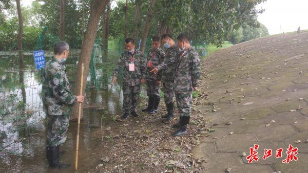 """""""水位不退,我们不下堤"""",12名退役军人自发组建防汛突击队"""