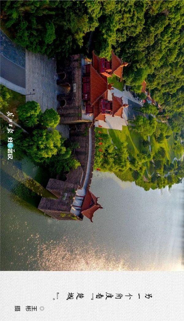 """摄影师的镜头里,有东湖""""美丽的角落"""""""