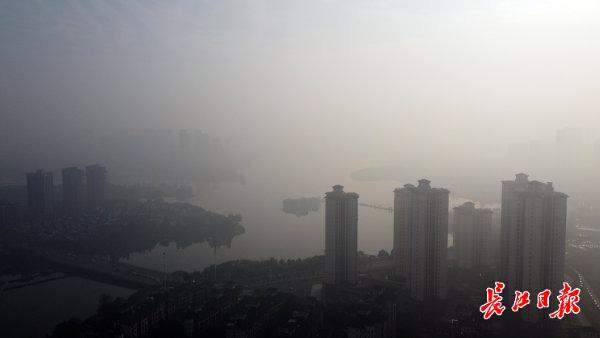 晨雾霭霭|图集