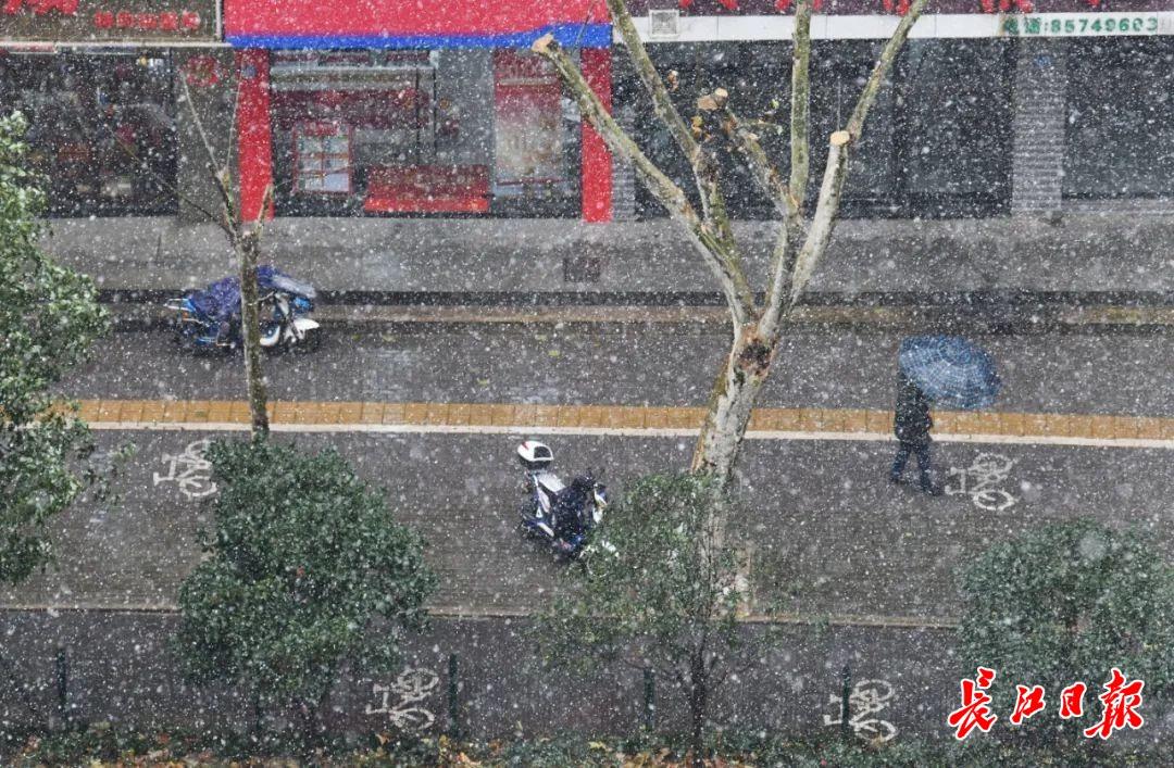 下雪为什么会成为社会热门新闻   长江评论插图