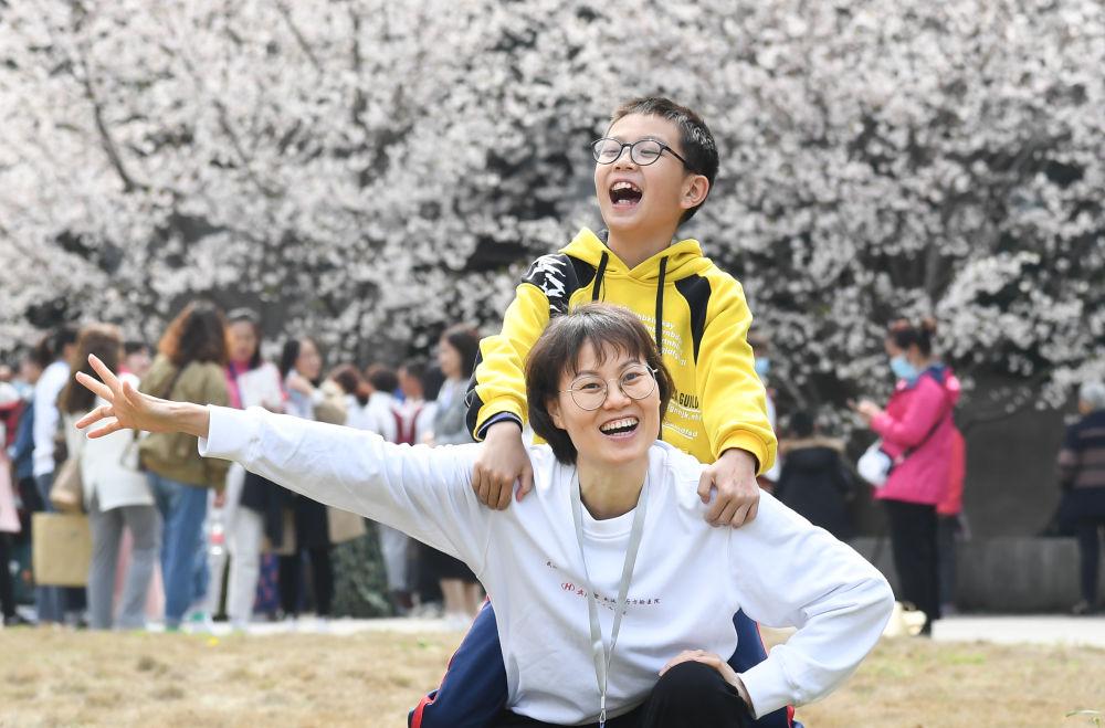 珞珈山的樱花之约:去年说再见,今春再相见!