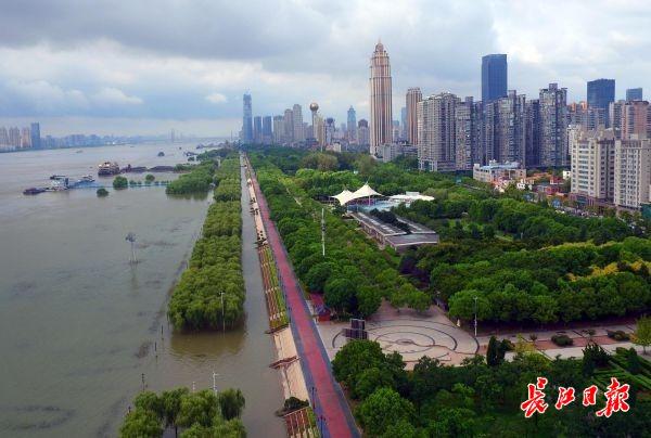 汉口江滩整洁一新 | 图集