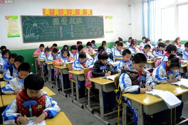 等年级初中无对口短文长期远赴4公里借读小学一多个失物招领英语小区图片