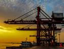 拍武汉新港