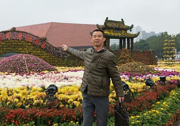 武汉旅行:雨中赏菊