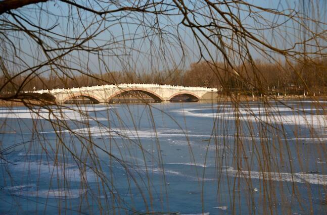 冬日探寻郊野公园