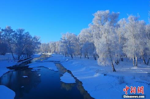 大面积霜挂美景
